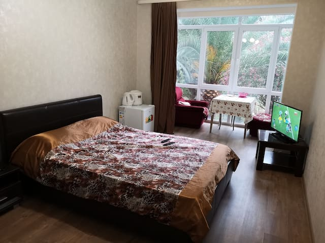 Квартира в центре Нового Афона
