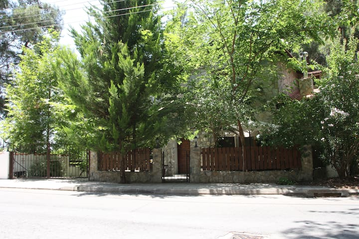 Modern Rustic House In Moniatis