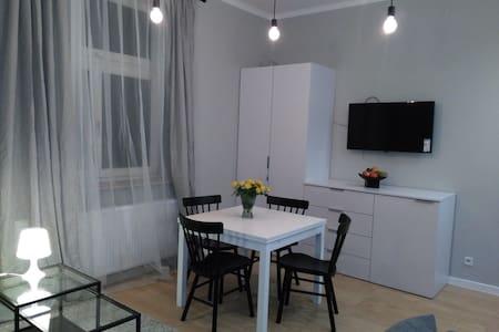 Modern Studio with great location,city centre - Krakova - Huoneisto
