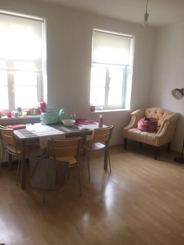 Charmanter 2 Zimmer Altbau am Inn - Passau - Lägenhet
