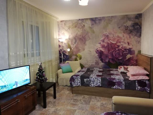 квартира 1-комнатная, Российская-2,wi-fi