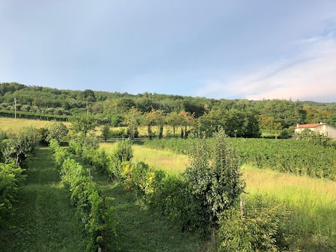 House with hills view- on the slopes of Montello