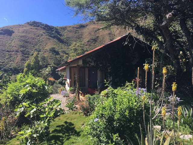 Cabaña Morada, Digital Nomad and Staycation Heaven