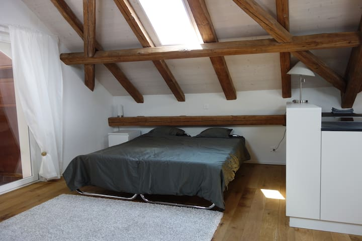 Your home in central Zurich!