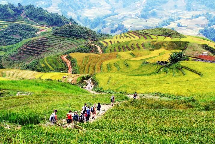 Sapa trekking 4N/3D(Homestay+Hotel) - Hanói