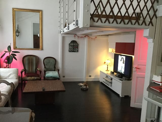 Loft 2 bedroom Val de Grâce/Cochin
