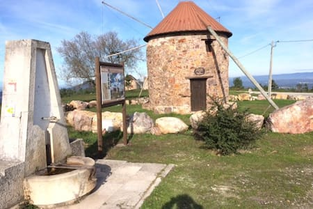 Fernando's windmill * Penacova