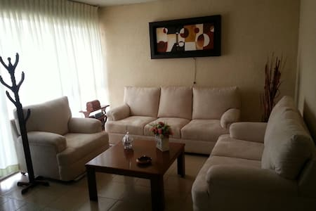 Habitaciones en zona comercial, céntrico. - San Luis Potosí - Leilighet