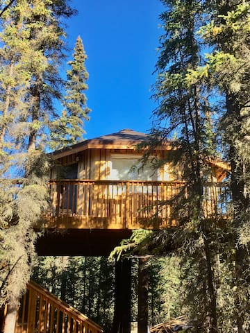 Alaskan Treehouse!