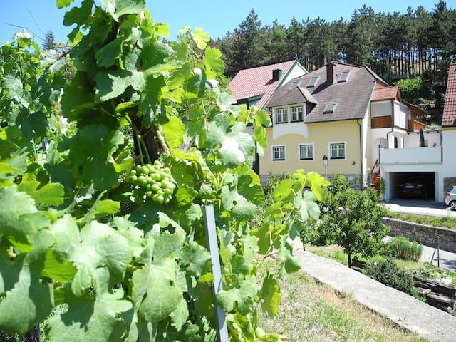 Gästehaus Johanna Dürnstein - Dürnstein - Appartement