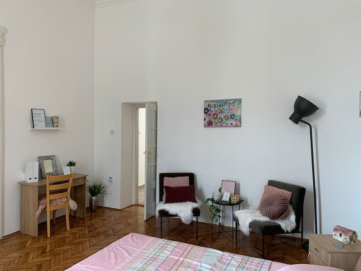 Spacious French style Apartment in City Centre