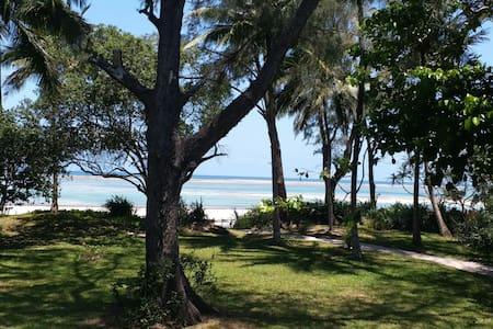 Upper Colobus - beach front property