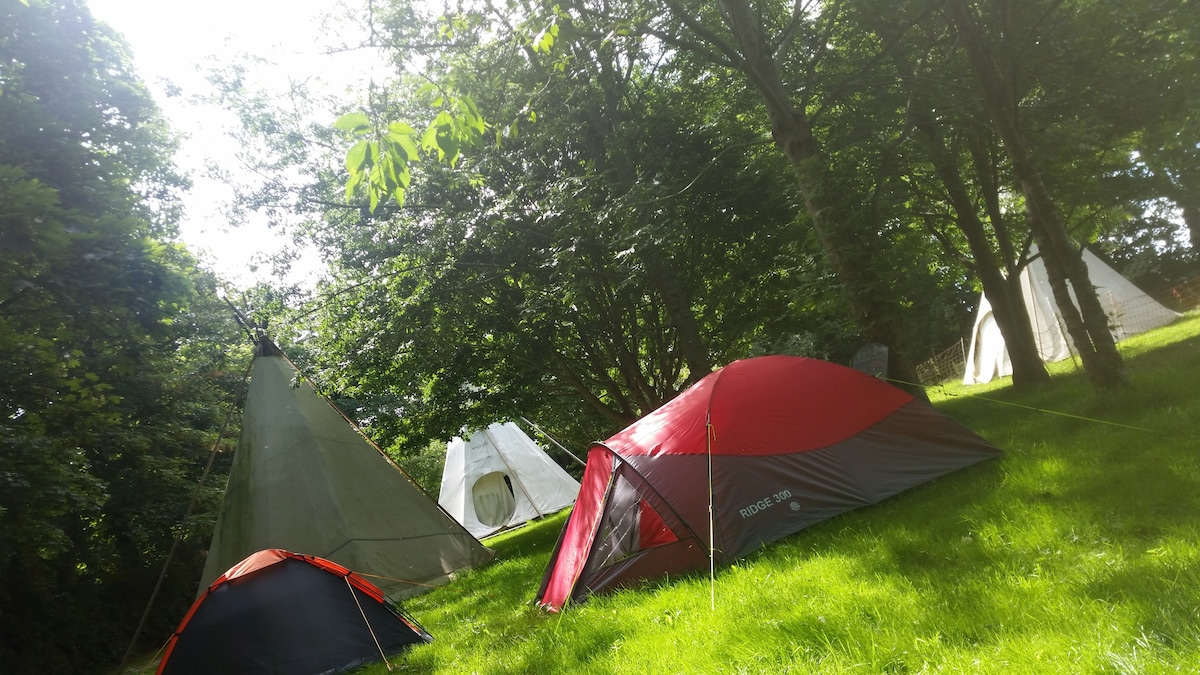 C&ing field C&ing field & Tent pitch space to hire (bring your own tent). - Tents for Rent ...