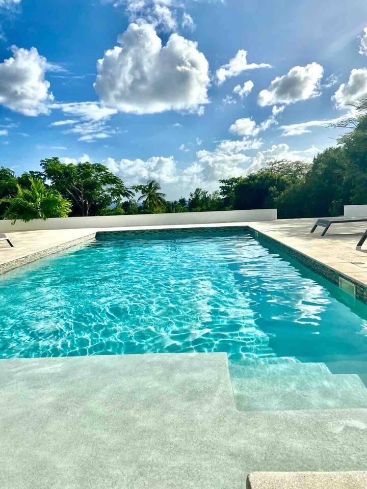 NOUVEAU ! Villa 4 à 8 per. piscine Terres Basses