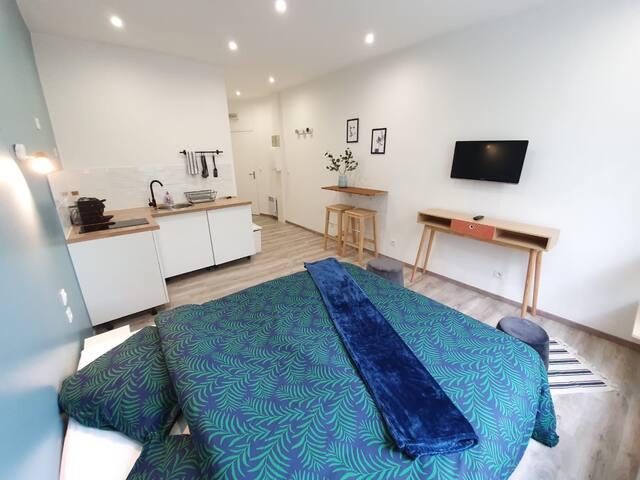 Amazing studio in Center of Paris Marais