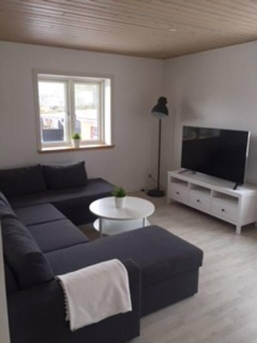 """Stue med stor u-sofa, som kan laves om til sovesofa, samt 55"""" fladskærms tv."""