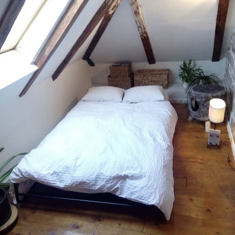 Attic studio Cathouse
