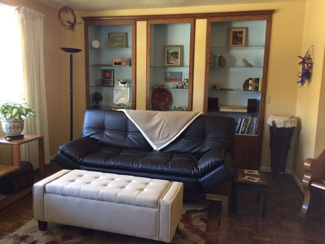 Living Room with Futon Couch