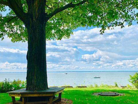 Coffee on the Lake