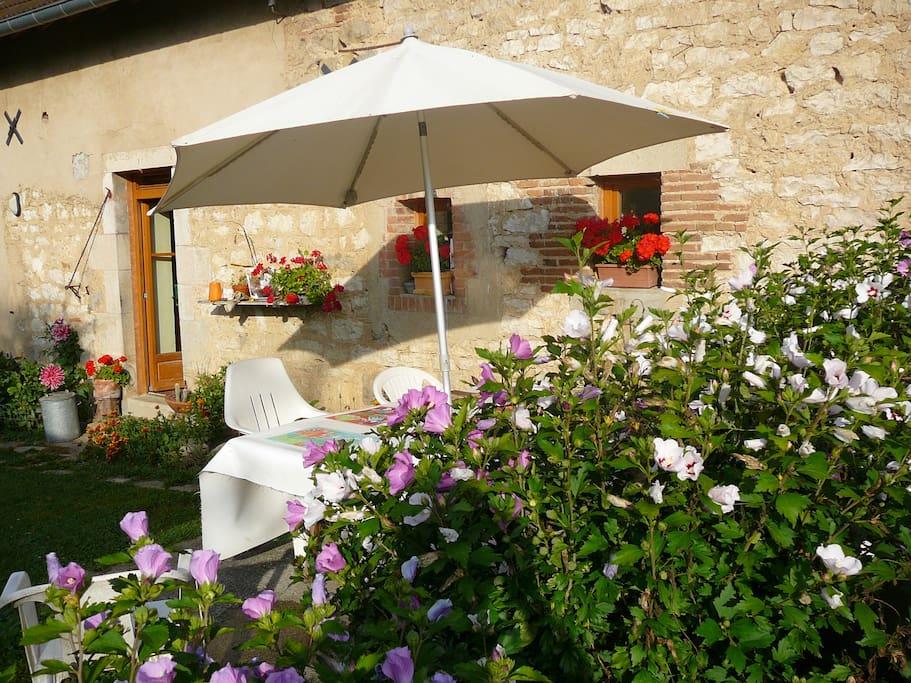 jardins extérieurs à disposition