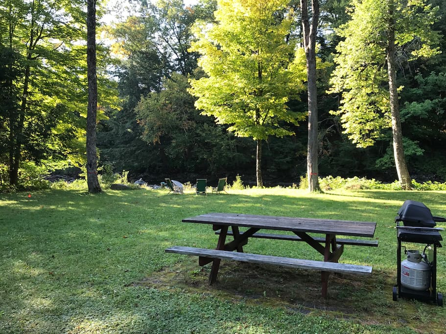 lawn view, picnic table, grill
