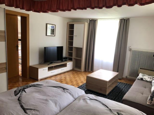 Großräumiges Apartment im Haus Kofler