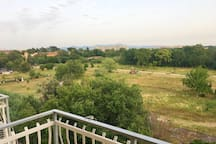 Parco antistante