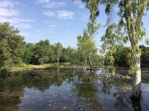Perfect artist/ writer's retreat in solitude