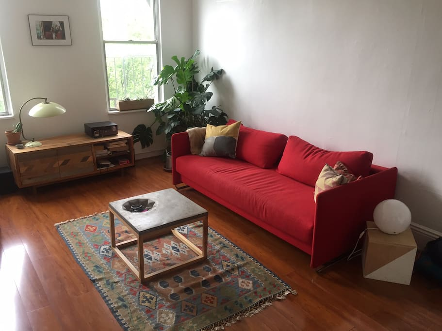 Sunny livingroom with a full-size sofabed