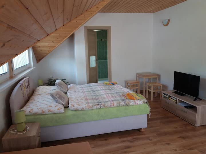 Vila Park VYHNE SLOVAKIA green double room+2extra