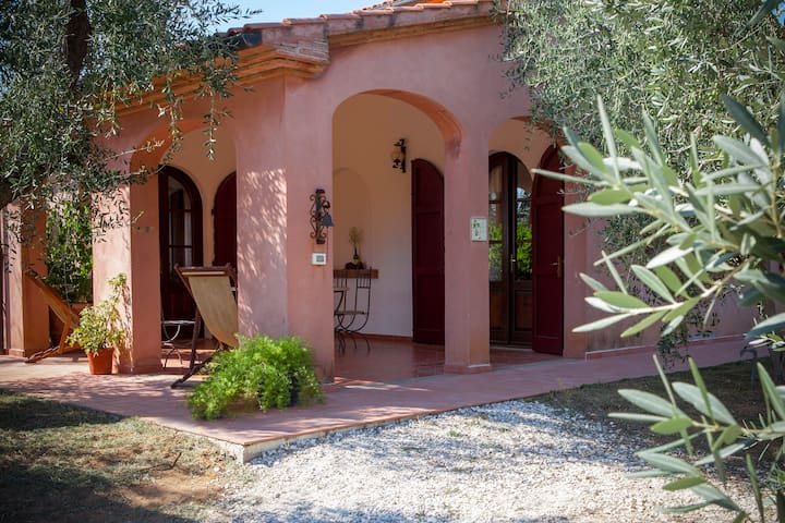 Apartment in the Tuscan countryside - Bolgheri - Apartamento