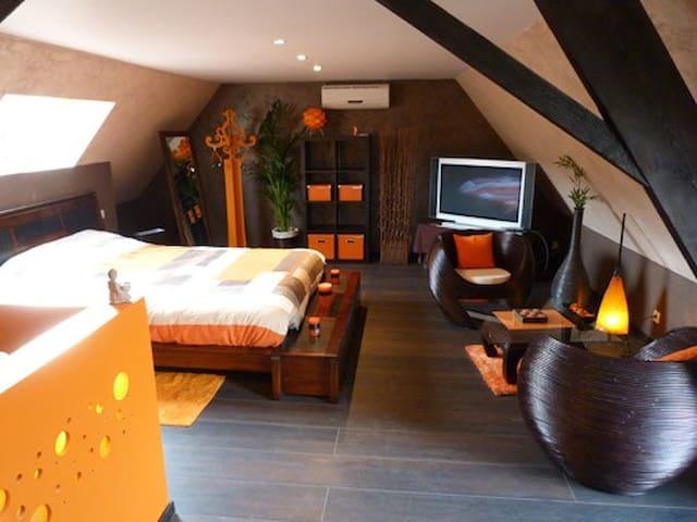Gîte avec Spa et Sauna privatifs - Halluin - Huoneisto