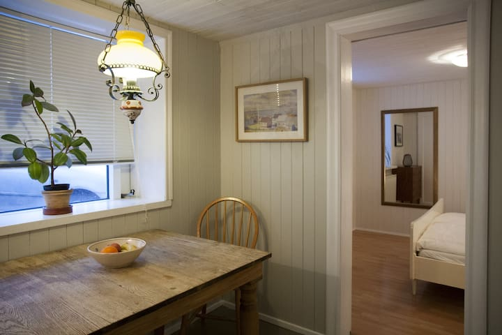 Small, Homely Apartment in a Downtown Family House - Reikiavik - Apartamento
