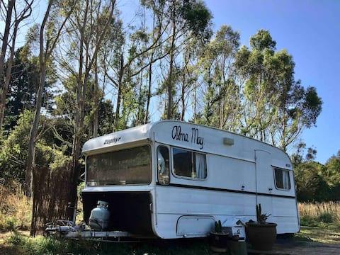 Alma May - Retro Caravan in Onekaka