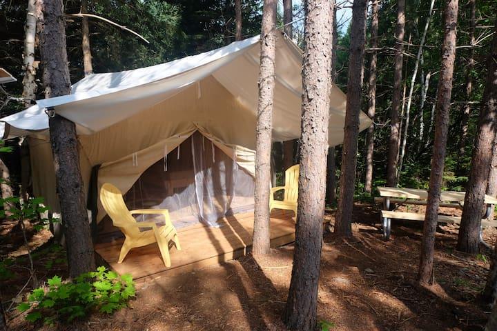 The Buckwheat Tent