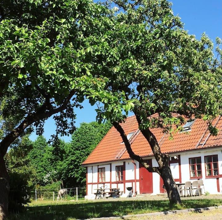 Charmig lägenhet på hästgård i Flyinge Kungsgård!