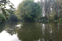 Our 1 acre carp & coarse fishing lake is free for guests throughout the year.