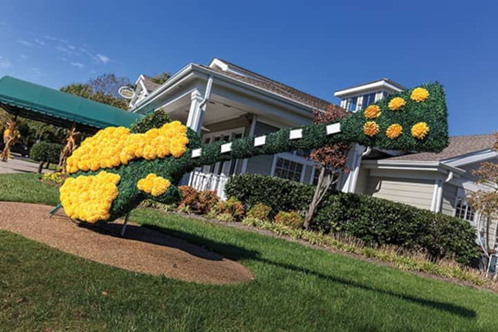 Charming 2-bdr luxury resort condo near the Opry!