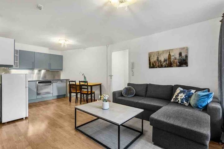 Entire apartment with one bedroom