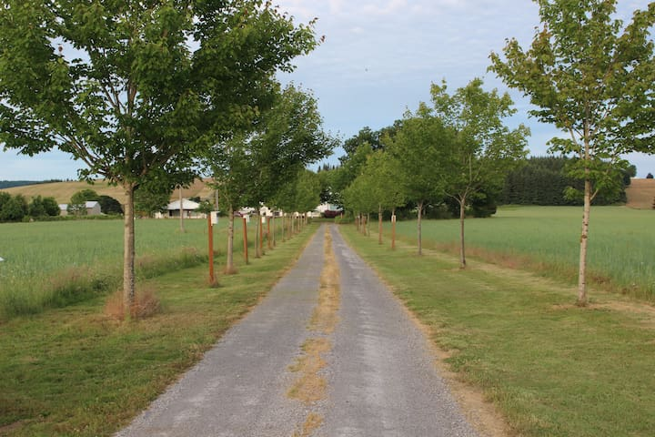The road to your next adventure (the driveway to the residence).