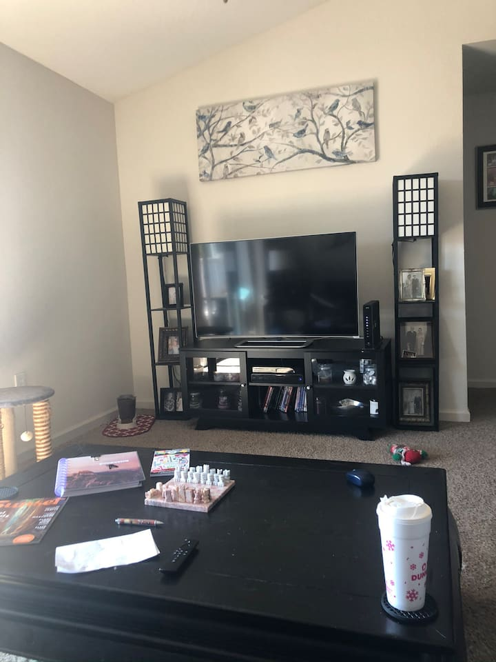 central tv with wifi, firestick, no cable, just streaming services.