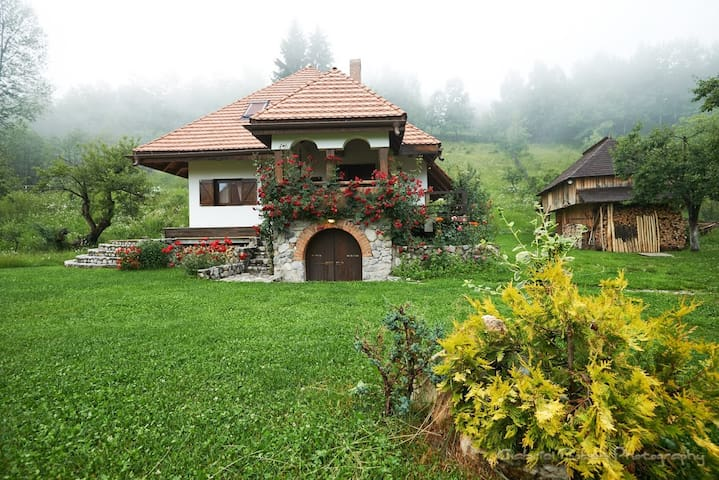 House with two bedrooms - Nucșoara - Rumah