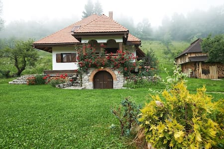 House with two bedrooms - Nucșoara - Hus