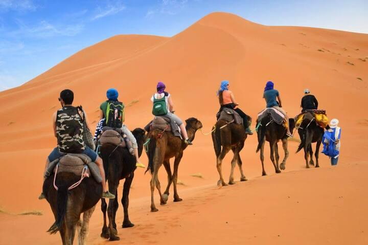 family camp in desert