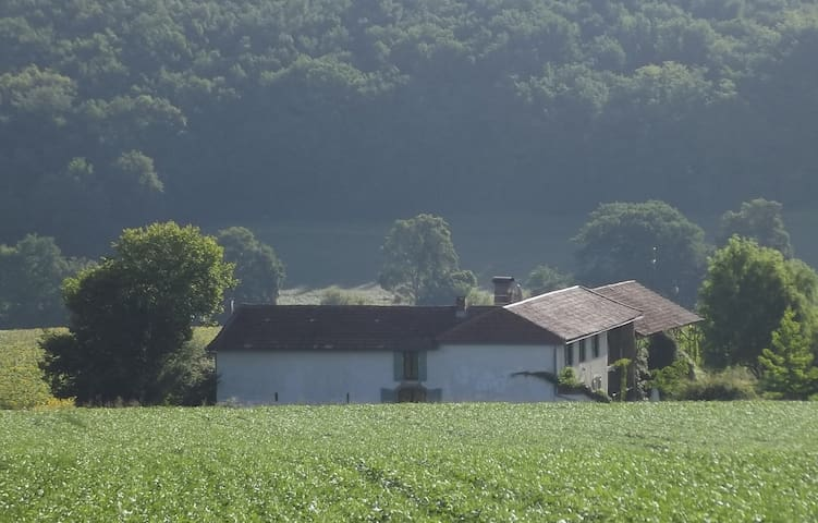 Barn conversion with private garden - Aux-Aussat - Hus