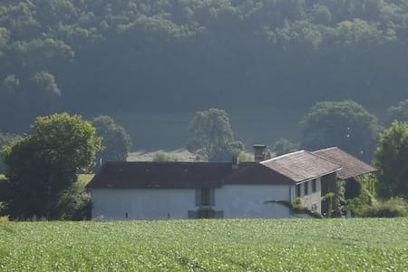 Barn conversion with private garden - Aux-Aussat - Ev