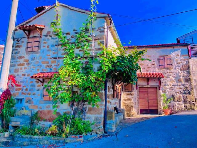 Winery & archaic Trsek house