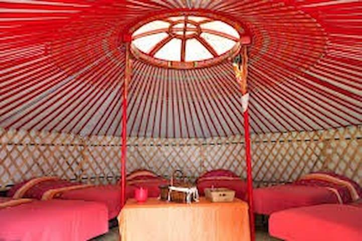 yourte de campagne - Thiviers - Yurt
