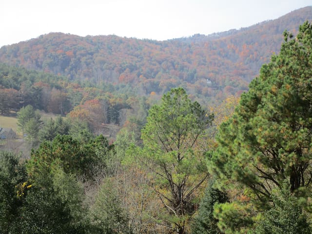 Mountain Views, Flowing Waters, Family Retreat - Asheville - Lägenhet