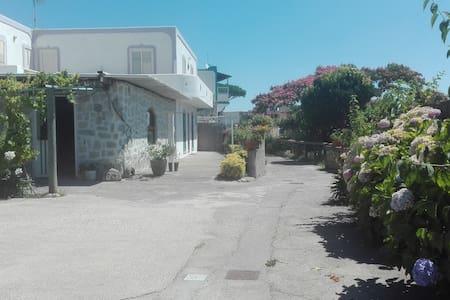 Villa Iola - Serrara Fontana - Lägenhet